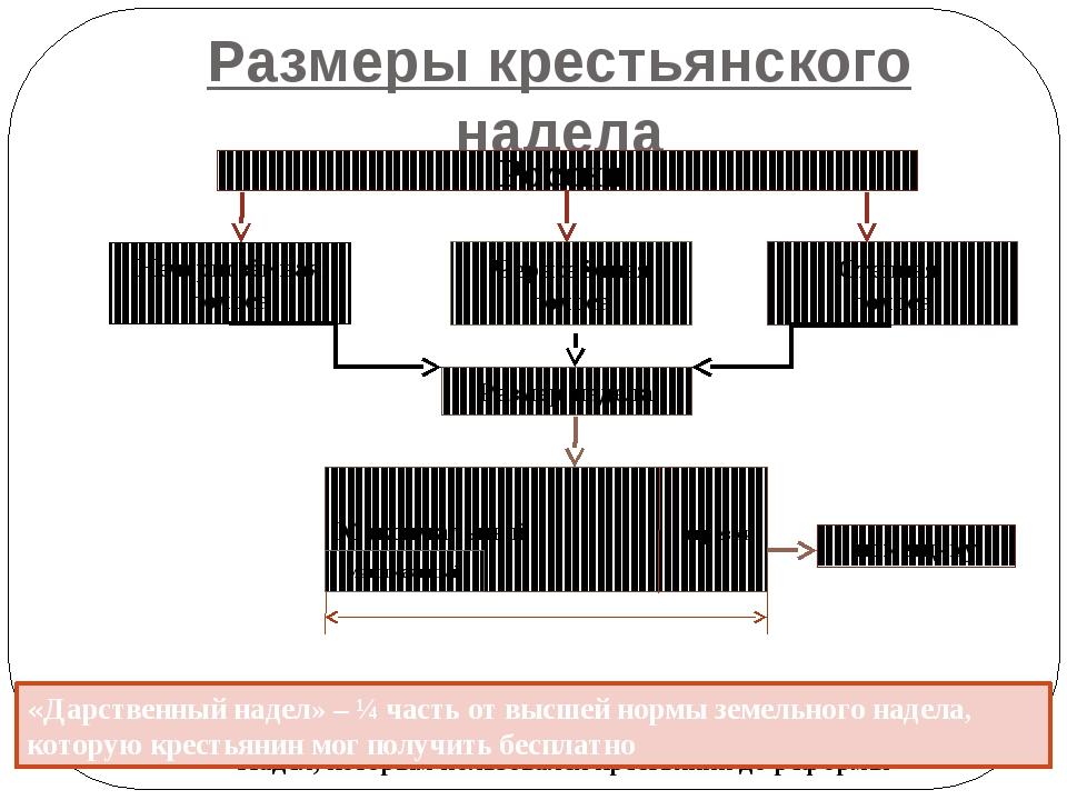 Размеры крестьянского надела Надел, которым пользовался крестьянин до реформы...