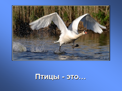 hello_html_m62fb125d.png