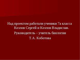 Над проектом работали ученики 7а класса Козлов Сергей и Козлов Владислав. Рук