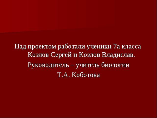 Над проектом работали ученики 7а класса Козлов Сергей и Козлов Владислав. Рук...