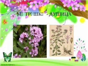 МӘТРҮШКӘ - ДУШИЦА FokinaLida.75@mail.ru