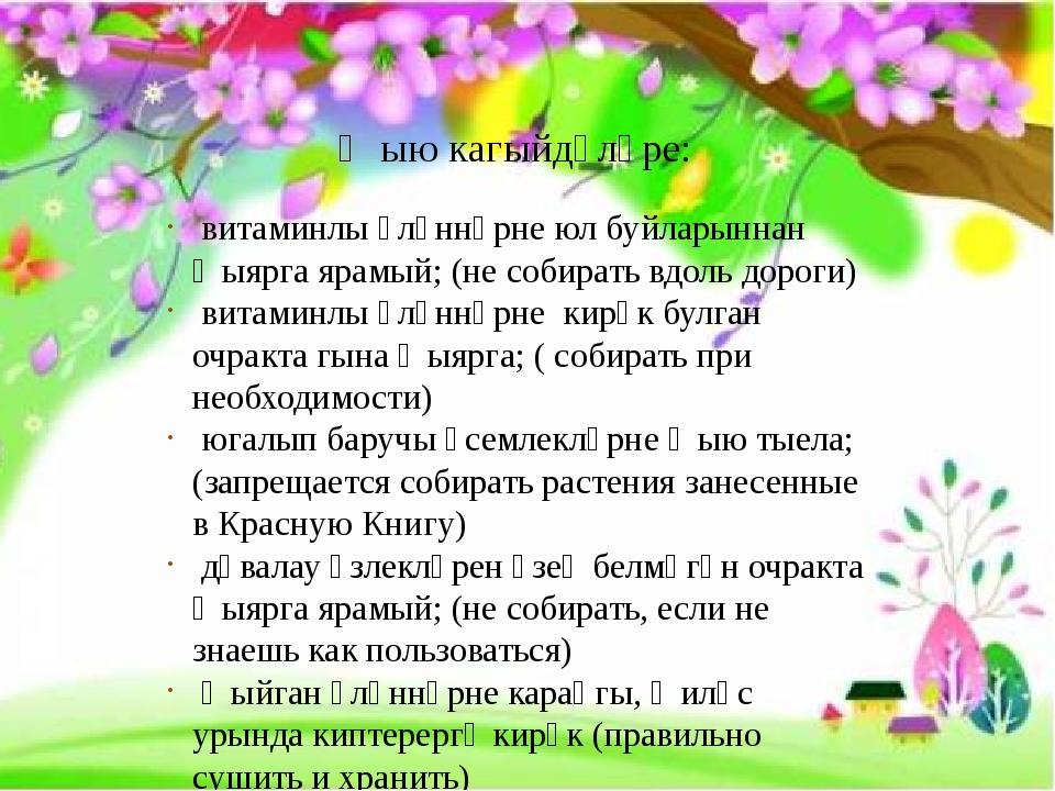 Җыю кагыйдәләре: витаминлы үләннәрне юл буйларыннан җыярга ярамый; (не собир...