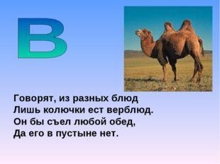 Говорят, из разных блюд Лишь колючки ест верблюд. Он бы съел любой обед, Да е