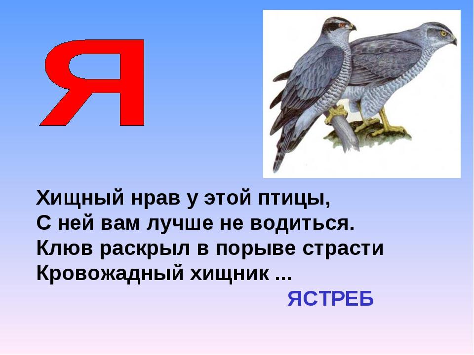 Хищный нрав у этой птицы, С ней вам лучше не водиться. Клюв раскрыл в порыве...