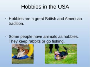Hobbies in the USA Hobbies are a great British and American tradition. Some