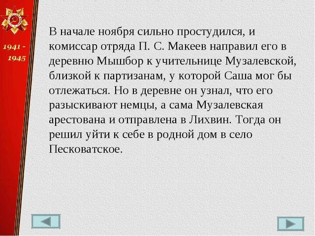 В начале ноября сильно простудился, и комиссар отряда П.С.Макеев направил е...
