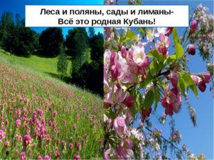 Леса и поляны, сады и лиманы- Всё это родная Кубань!