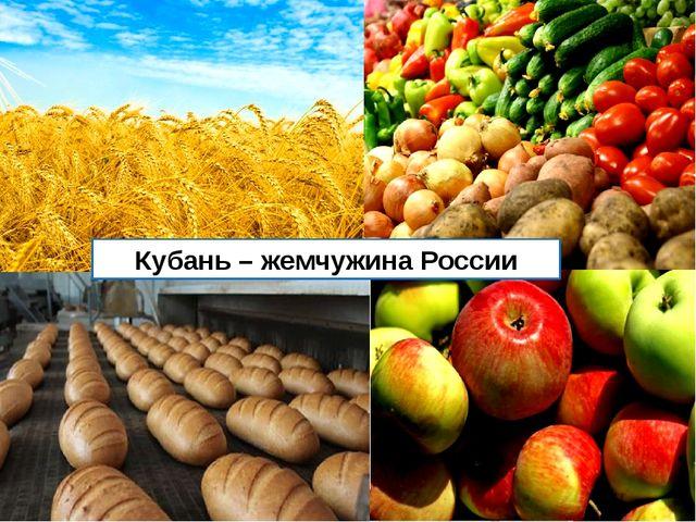 Кубань – жемчужина России