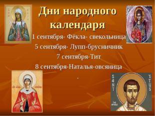 Дни народного календаря 1 сентября- Фёкла- свекольница 5 сентября- Лупп-брусн