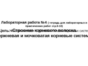 Лабораторная работа №4 ( тетрадь для лабораторных и практических работ стр.9