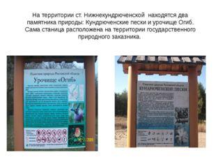 На территории ст. Нижнекундрюченской находятся два памятника природы: Кундрюч