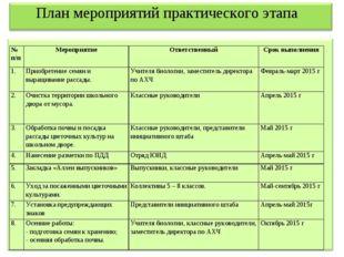 План мероприятий практического этапа № п/пМероприятиеОтветственныйСрок вы