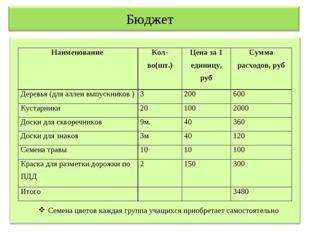 Бюджет Семена цветов каждая группа учащихся приобретает самостоятельно Наимен
