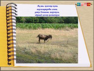 Ах ты,козочка-коза, перламутровы глаза, ушки длинные, торчком, чёрный носик