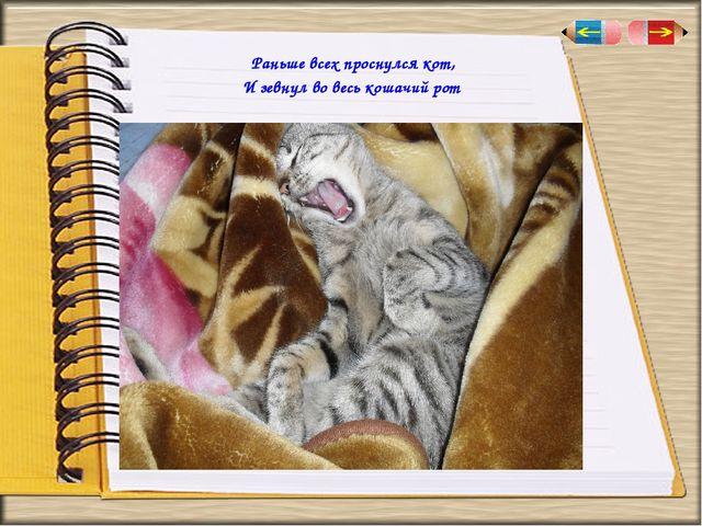 Раньше всех проснулся кот, И зевнул во весь кошачий рот