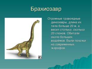 Брахиозавр Огромные травоядные динозавры, длина их тела больше 20 м, а весил