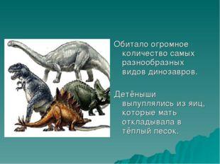 Обитало огромное количество самых разнообразных видов динозавров. Детёныши вы