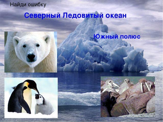 Северный Ледовитый океан Южный полюс Северный полюс Найди ошибку