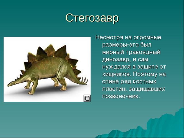 Стегозавр Несмотря на огромные размеры-это был мирный травоядный динозавр, и...