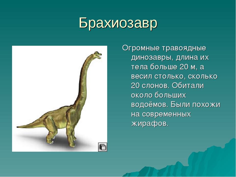 Брахиозавр Огромные травоядные динозавры, длина их тела больше 20 м, а весил...