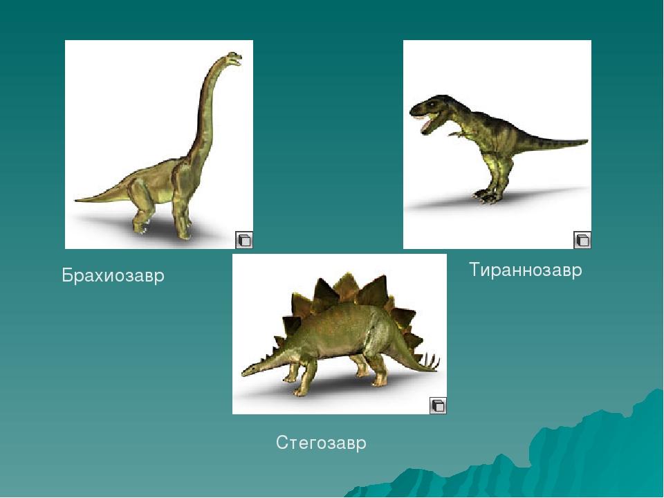 Брахиозавр Тираннозавр Стегозавр