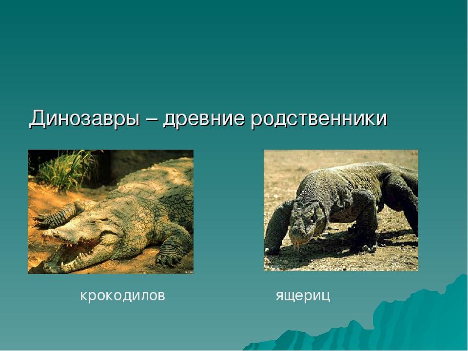 Динозавры – древние родственники крокодилов ящериц