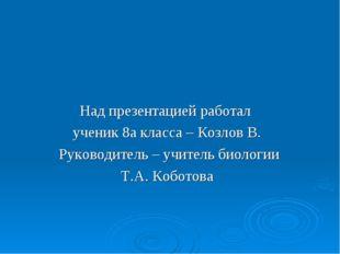 Над презентацией работал ученик 8а класса – Козлов В. Руководитель – учитель