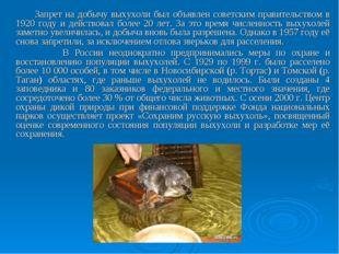 Запрет на добычу выхухоли был объявлен советским правительством в 1920 году