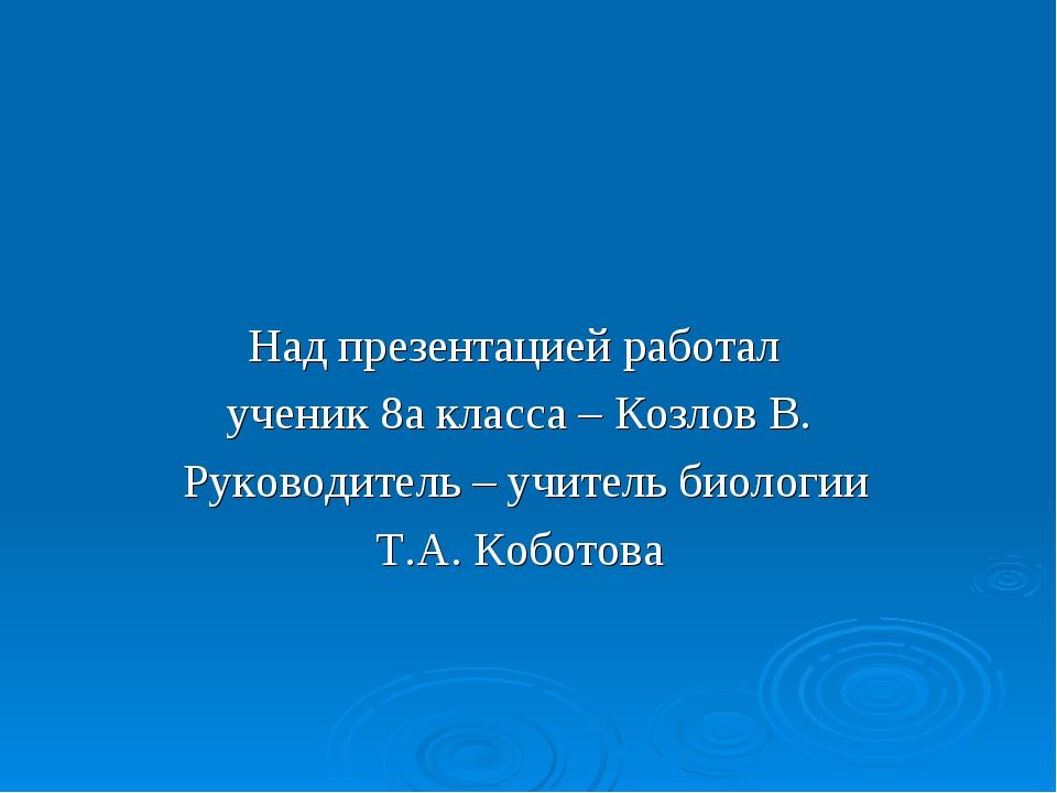 Над презентацией работал ученик 8а класса – Козлов В. Руководитель – учитель...