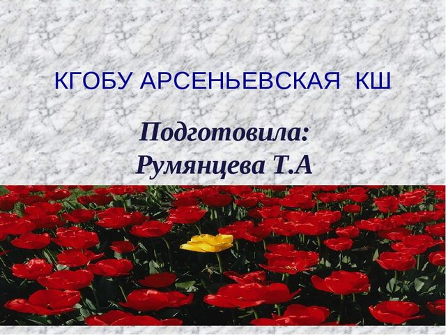 КГОБУ АРСЕНЬЕВСКАЯ КШ Подготовила: Румянцева Т.А