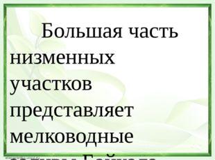 Большая часть низменных участков представляет мелководные заливы Байкала. Ра