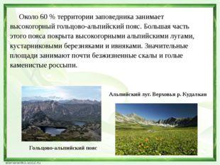 Около 60 % территории заповедника занимает высокогорный гольцово-альпийский