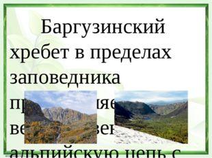 Баргузинский хребет в пределах заповедника представляет величественную альпи