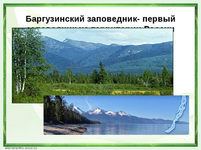 Баргузинский заповедник- первый заповедник на территории России