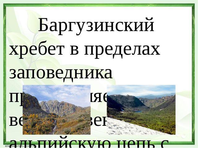 Баргузинский хребет в пределах заповедника представляет величественную альпи...