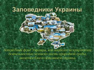 Заповедный фонд Украины, как наиболее незатронутая деятельностью человека час
