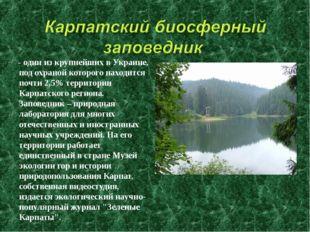 - один из крупнейших в Украине, под охраной которого находится почти 2,5% те