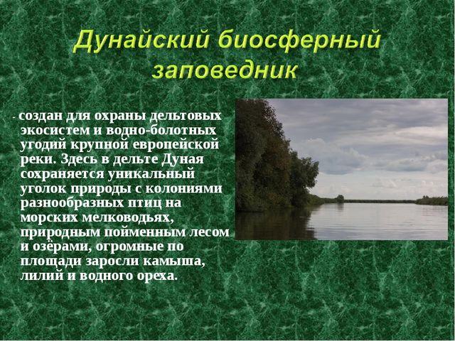 - создан для охраны дельтовых экосистем и водно-болотных угодий крупной евро...