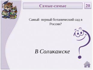 В Соликамске Самый первый ботанический сад в России?
