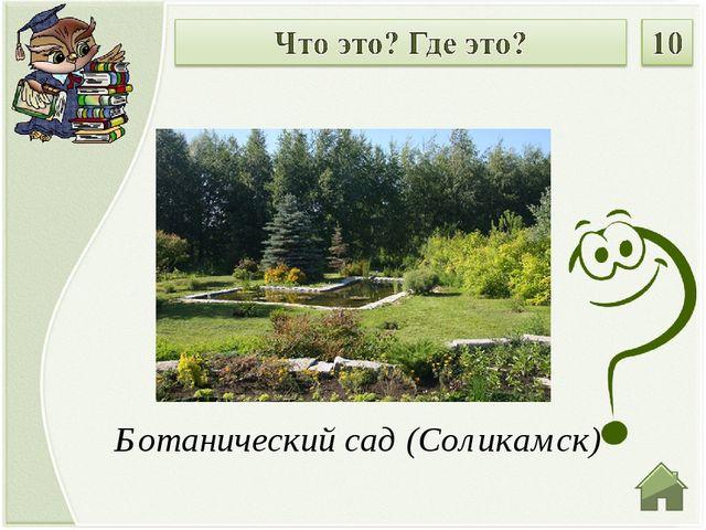Ботанический сад (Соликамск)
