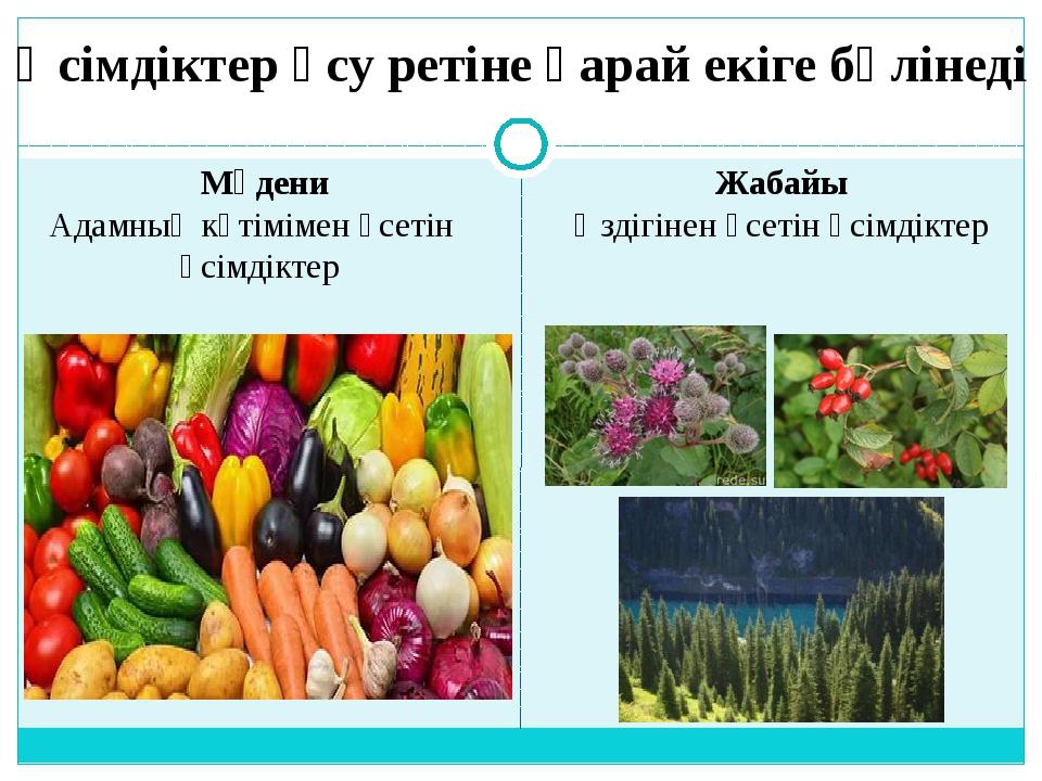 Өсімдіктер өсу ретіне қарай екіге бөлінеді Мәдени Адамның күтімімен өсетін өс...