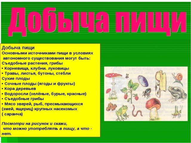 Добыча пищи Основными источниками пищи в условиях автономного существования м...