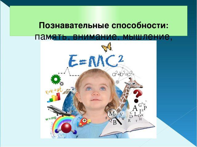 Познавательные способности: память, внимание, мышление, воображение
