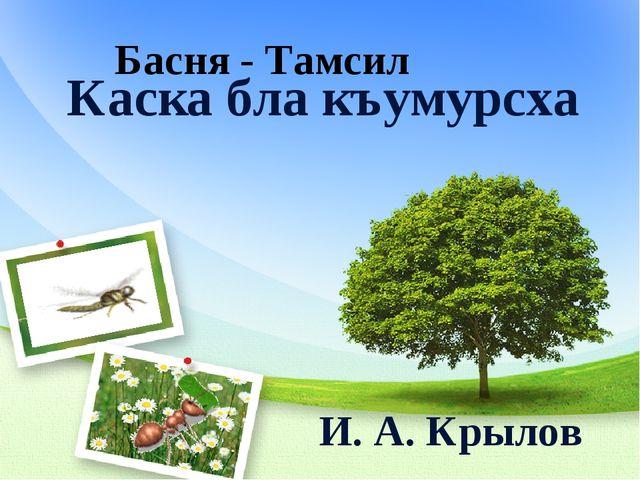 Каска бла къумурсха И. А. Крылов Басня - Тамсил