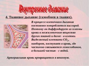 4. Тканевое дыхание (газообмен в тканях). В процессе клеточного дыхания посто