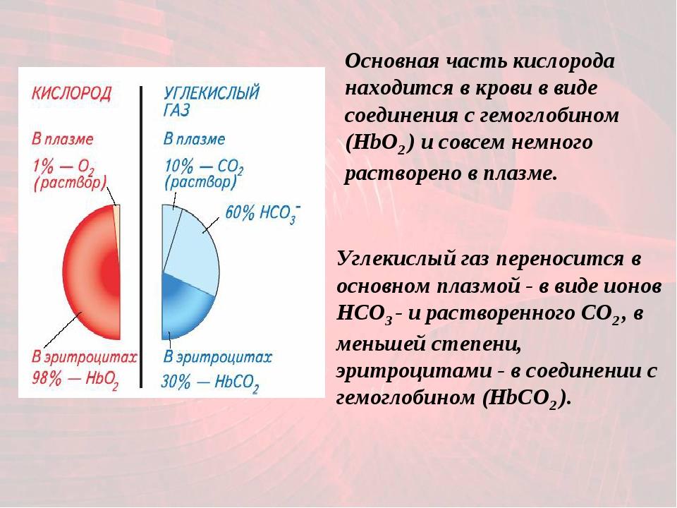 Основная часть кислорода находится в крови в виде соединения с гемоглобином (...