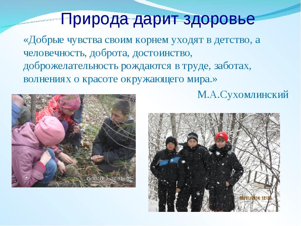 Природа дарит здоровье «Добрые чувства своим корнем уходят в детство, а челов...