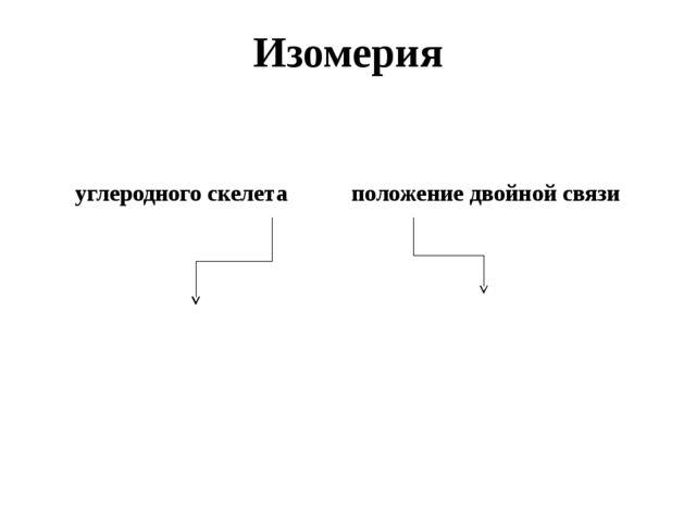 Изомерия углеродного скелета положение двойной связи