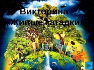 Викторина «Живые загадки»