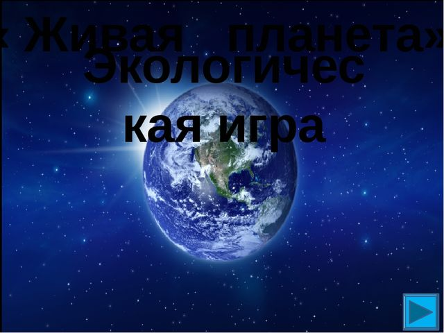 Экологическая игра « Живая планета»
